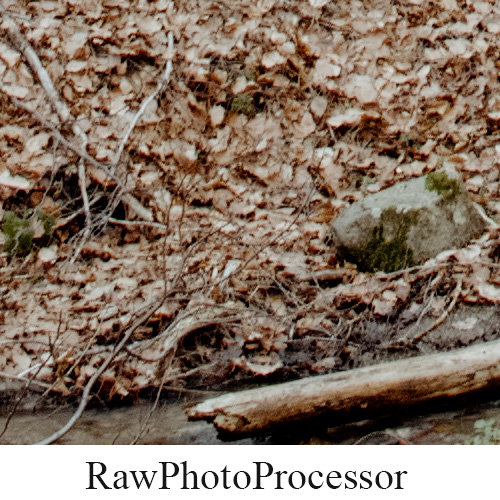 RawPhotoProcessor