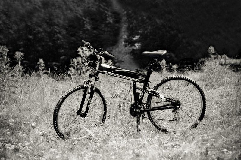 Montague SwissBike X50
